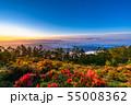 《山梨県》大雲海の夜明け・甘利山 55008362