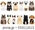 病気やけがをした小型犬と猫たちのセット 前後 55011013