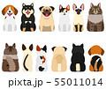笑顔の小型犬と猫たちのセット 前後 55011014