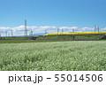 秋ソバ畑の新幹線 55014506