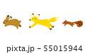 走る動物イラスト 55015944