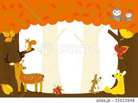 秋イメージイラスト 森の動物たち 55015948
