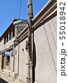 電柱を登るネコ 旧市街地の路地(ウズベキスタン, ブハラ) 55018942