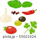 イタリア料理に使うスパイスやハーブ、野菜 55022424