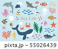 海の生き物イラストセット 55026439
