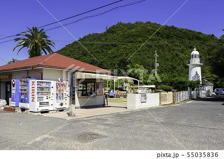 渋川マリン水族館 玉野海洋博物館 渋川海水浴場 岡山県玉野市 55035836