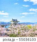 桜満開 尾道城 水彩風イラスト 55036103