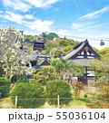 尾道 天寧寺 水彩風イラスト 55036104