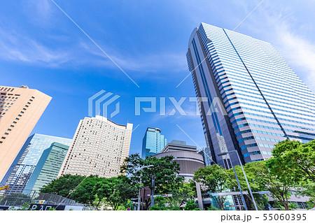 夏の朝の新宿高層ビル群 55060395