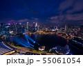 シンガポールの夜景 55061054