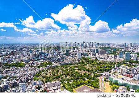 《東京都》青い空と白い雲・東京都市風景 55068846