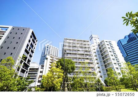 緑とマンションのある都市風景 55072650