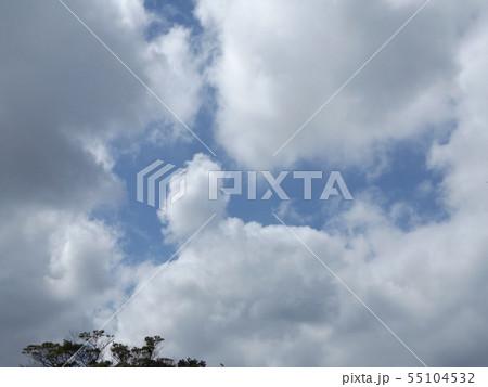夏の稲毛海浜公園の青空と白雲 55104532