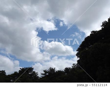夏の稲毛海浜公園の青空と白雲 55112114
