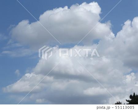 夏の稲毛海浜公園の青空と白雲 55113005