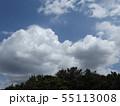 夏の稲毛海浜公園の青空と白雲 55113008