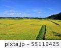 総武本線の沿線風景 55119425