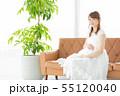 女性 妊婦 妊娠の写真 55120040