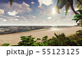 Branches of palm trees and tropical plants in the wind at sunrise. 3D Rendering 55123125