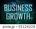 Business Growth 55124228