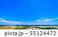 高台に並ぶクリーンエネルギー風力発電 55124472