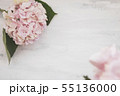 Pastel colored Hydrangea Flowers on White painted table 55136000