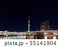 羽子板市ライティングの隅田川橋梁と、シャンパンツリーの東京スカイツリー 55141904