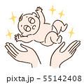赤ちゃん誕生 55142408