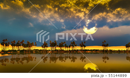 Palm trees near oasis in Africa 3d rendering 55144899
