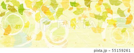 秋の陽だまりとカラフルな銀杏の葉 55159261