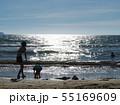 海辺の親子 55169609