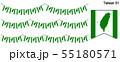台湾の旗のガーラーンド ベクターデータ(bunting garland) 55180571