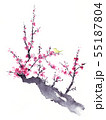 梅とウグイス 水墨画 55187804
