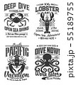 Octopus, crab and lobster logo cafe, diving club 55189755