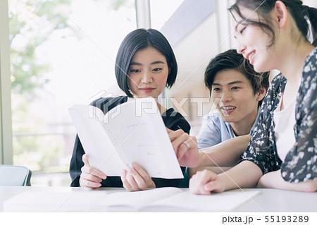 男女 大学生 勉強 撮影協力:恵泉女学園大学 55193289