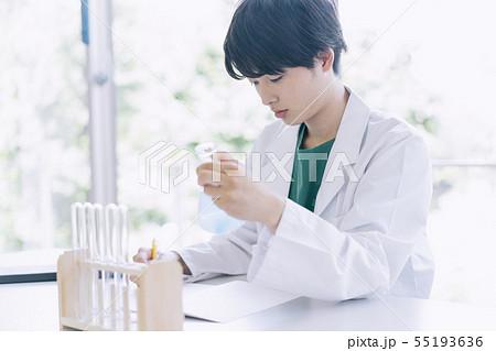 男性 大学生 白衣 撮影協力:恵泉女学園大学 55193636