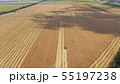 Combine harvester on a wheat field 55197238