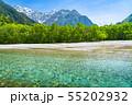 《長野県》新緑の上高地・岳沢と梓川 55202932