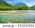 《長野県》新緑の上高地・岳沢と梓川 55202934