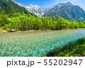《長野県》新緑の上高地・岳沢と梓川 55202947