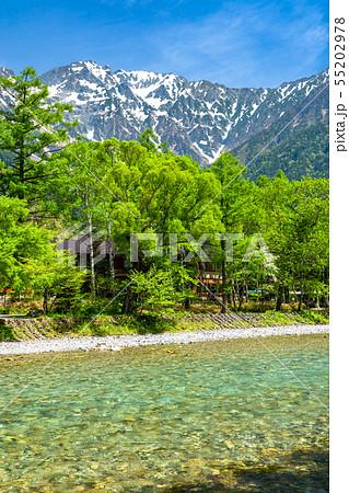 《長野県》新緑の上高地・岳沢と梓川 55202978