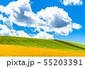 《北海道》夏の大空と田園風景・美瑛の丘 55203391