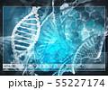 Medicine user interface 55227174
