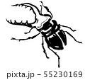 クワガタ 55230169