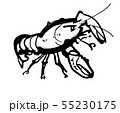 ザリガニ 55230175