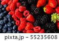 ミックスベリー 55235608