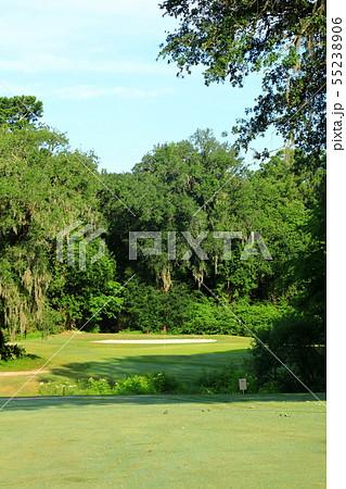 アメリカ 東海岸 サウスカロライナ チャールストン ゴルフコース 55238906