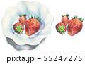 いちご(皿有/無セット) 55247275