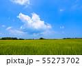 千葉県長生村の田園風景 55273702