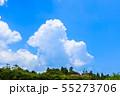 千葉県長生村の田園風景 55273706